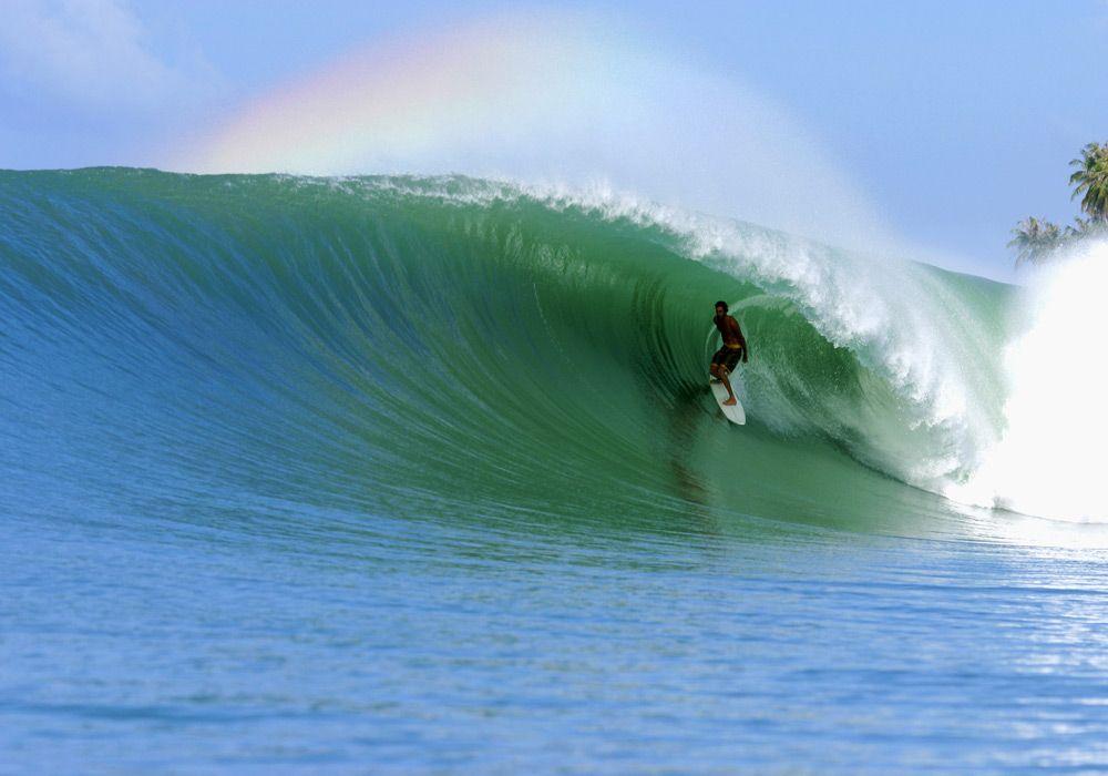 Занятие сёрфингом