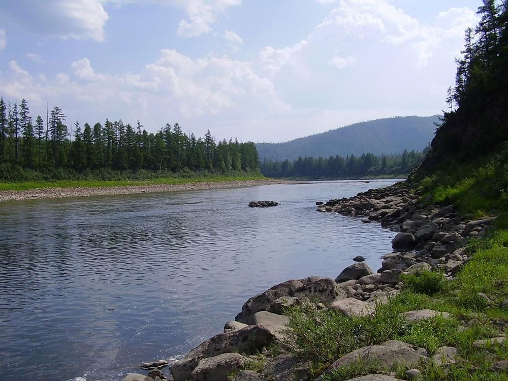Залив реки Тимптон