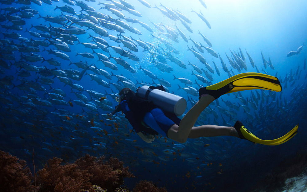 Дайвер под водой