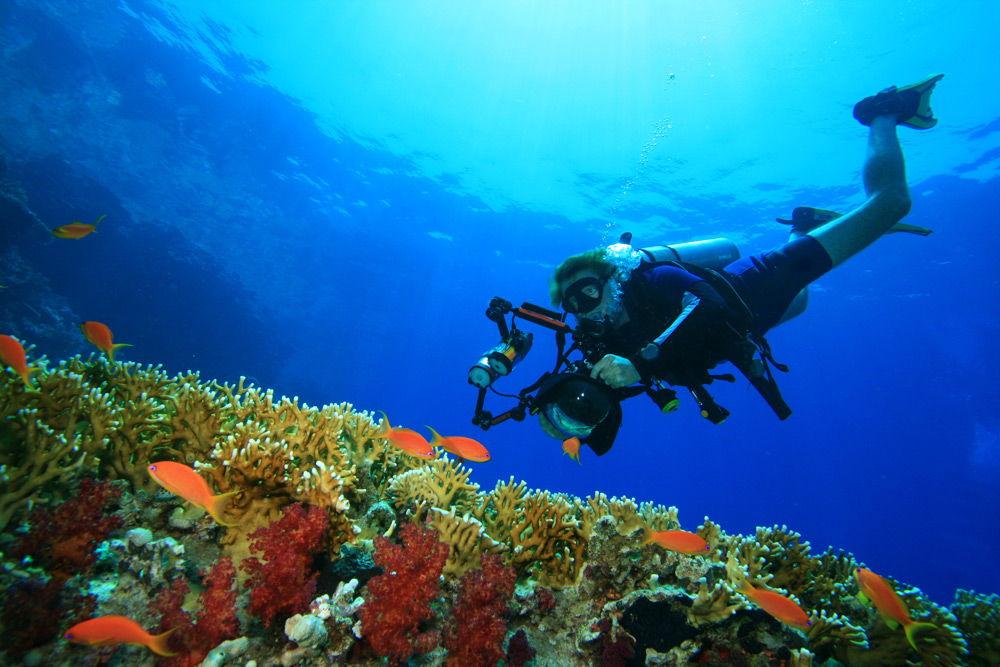 Фотограф под водой