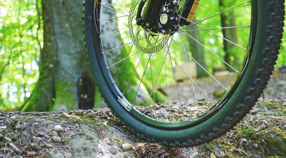 Спицы для колеса велосипеда