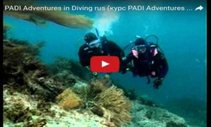 PADI - Adventures in Diving
