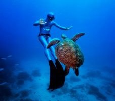 Фридайвер с черепахой