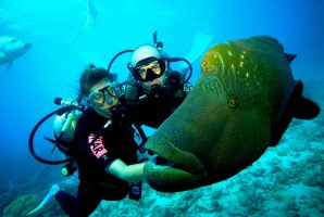 Дайверы с рыбой под водой