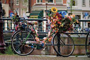 Всё о Дне велосипеда